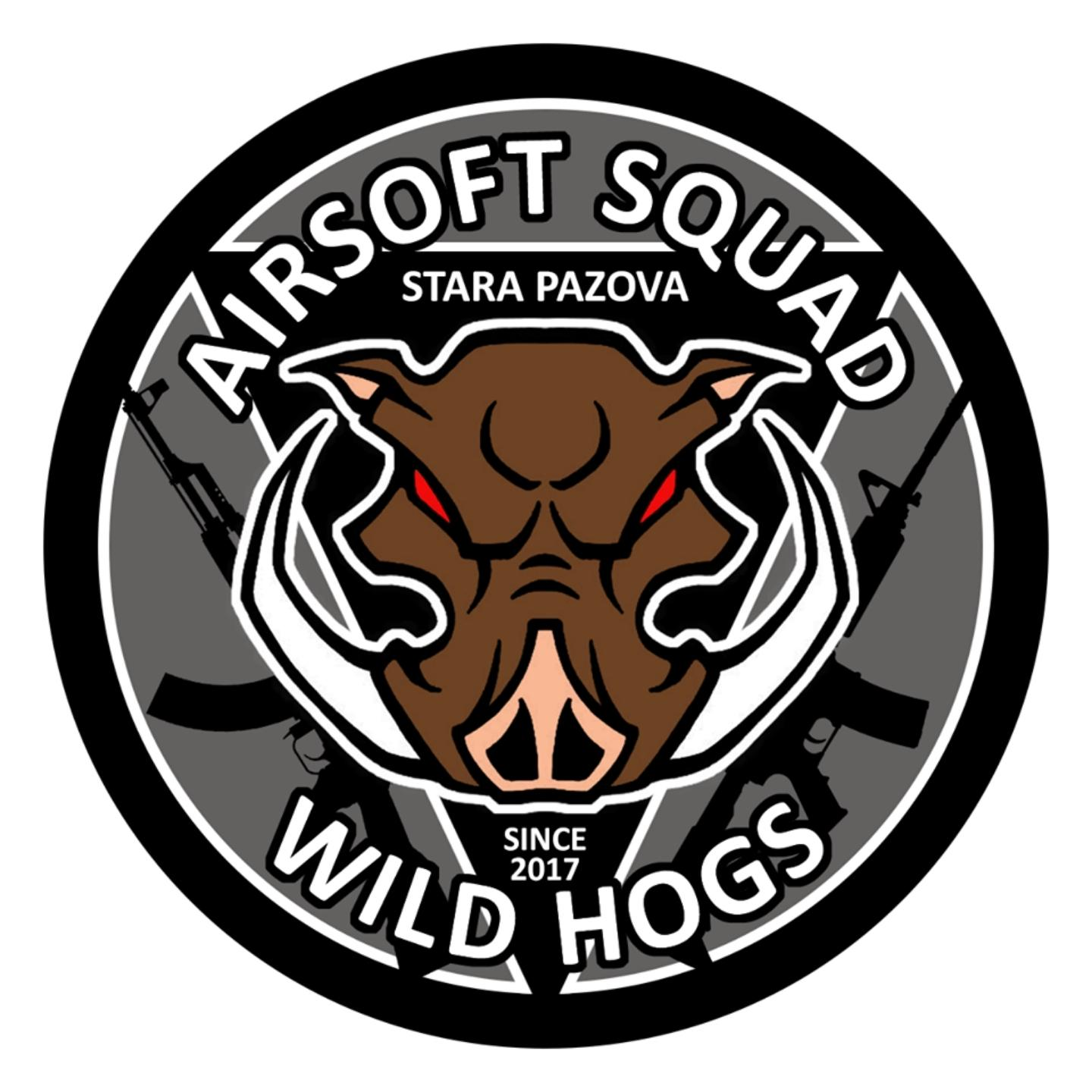 Picture of Wild Hogs