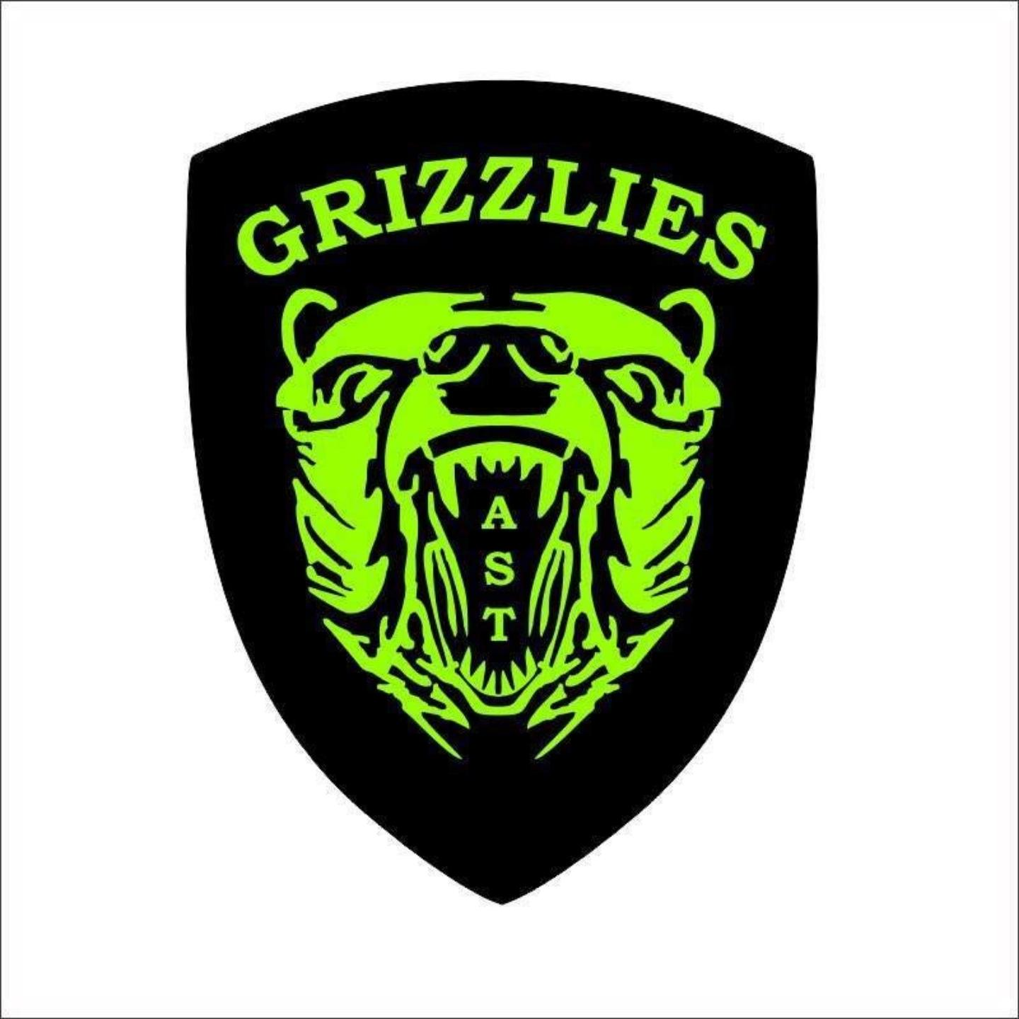Picture of Grizzlies