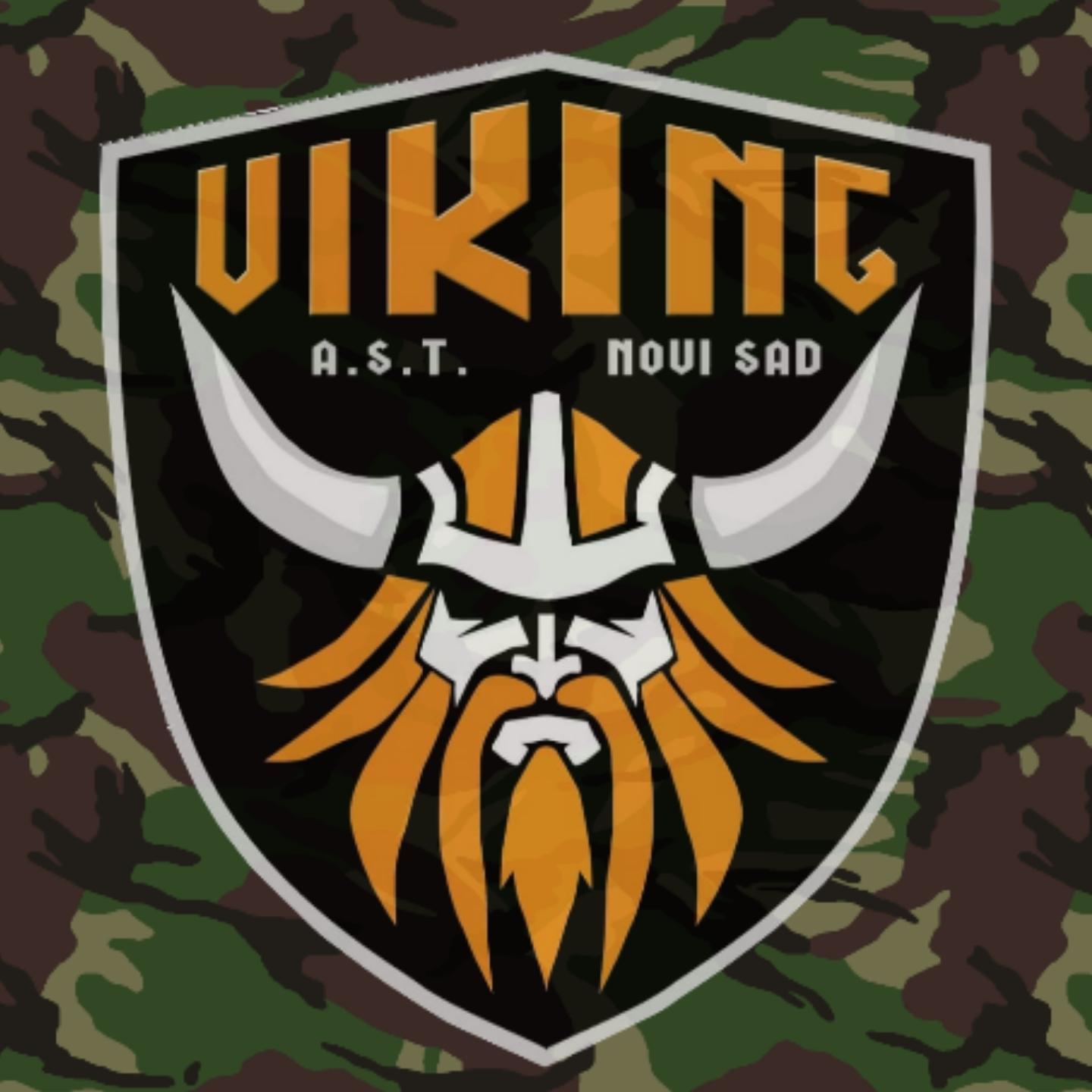 Picture of Viking